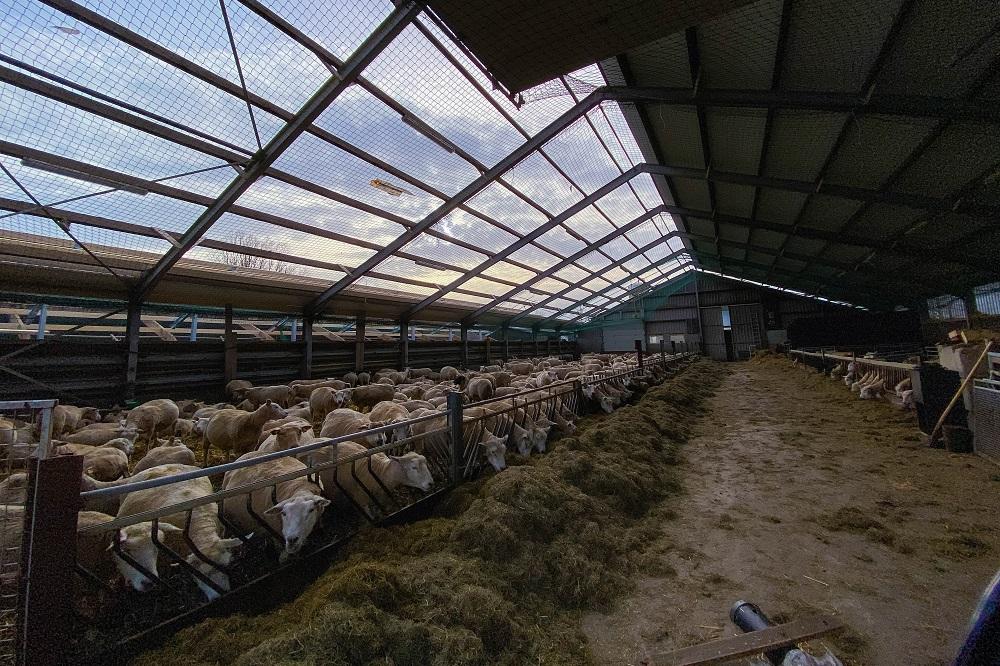 Uniek project helpt boeren van asbestdak af
