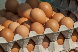 Consumentenprijs eieren stabiel, af boerderijprijs gedaald