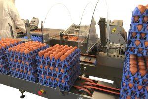 DAMTECH levert maatwerk met efficiënte oplossing kleinverpakkingen