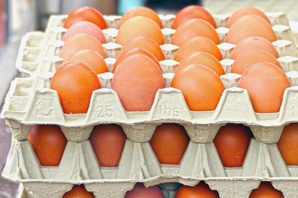 Huisartsen willen meer weten over voedsel